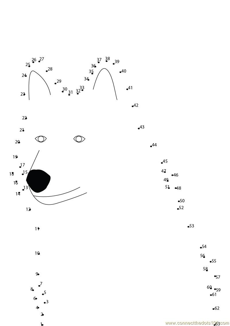 worksheet Peter And The Wolf Worksheet peter and the wolf worksheet google search og ulven search