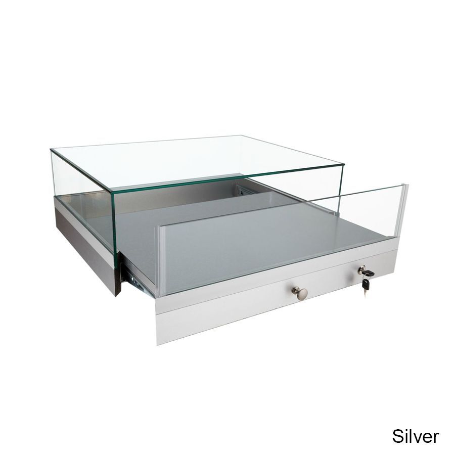 Gl202 Tecno Display With Images Countertop Display Case