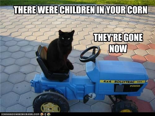 Children of the Corn vs. The Cat
