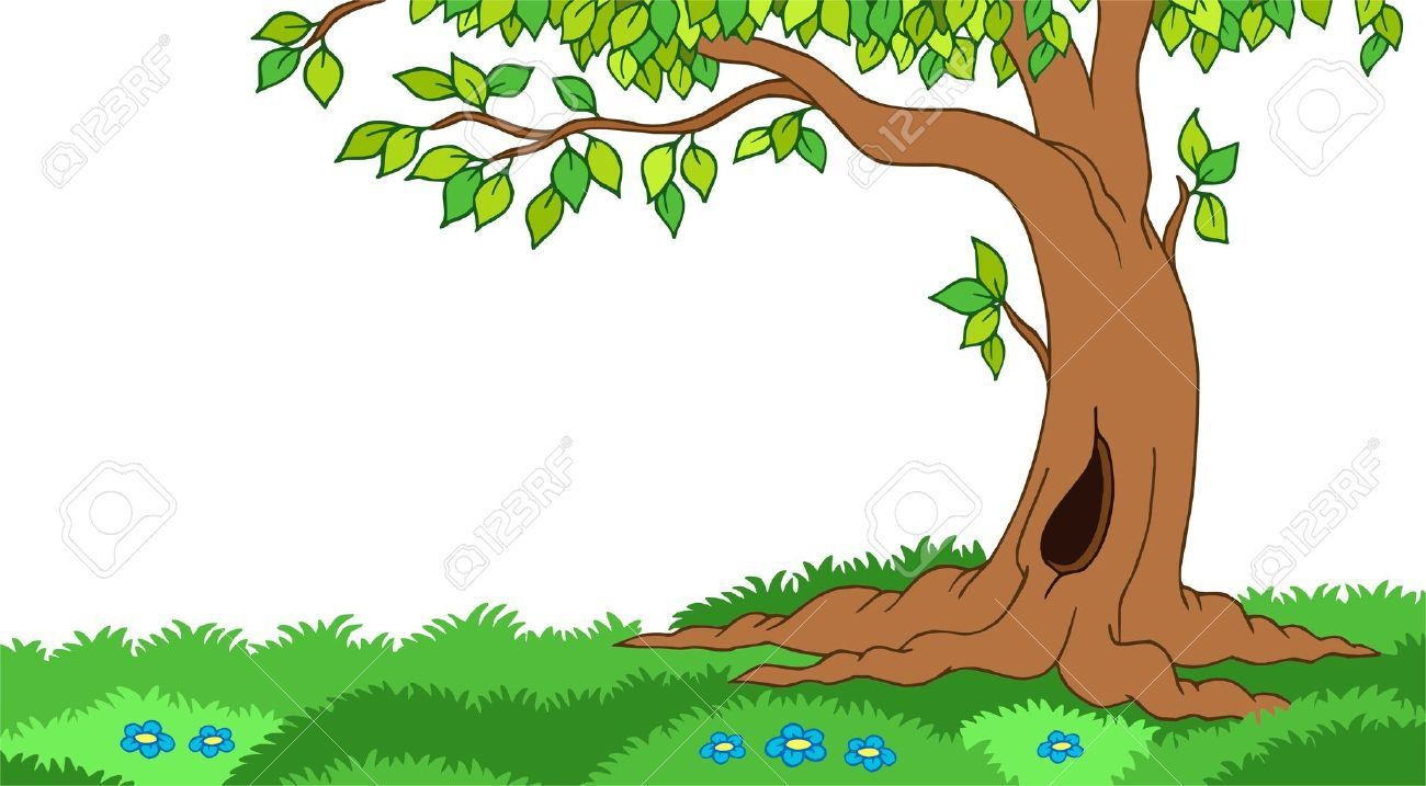 forest clipart free download [ 1300 x 717 Pixel ]