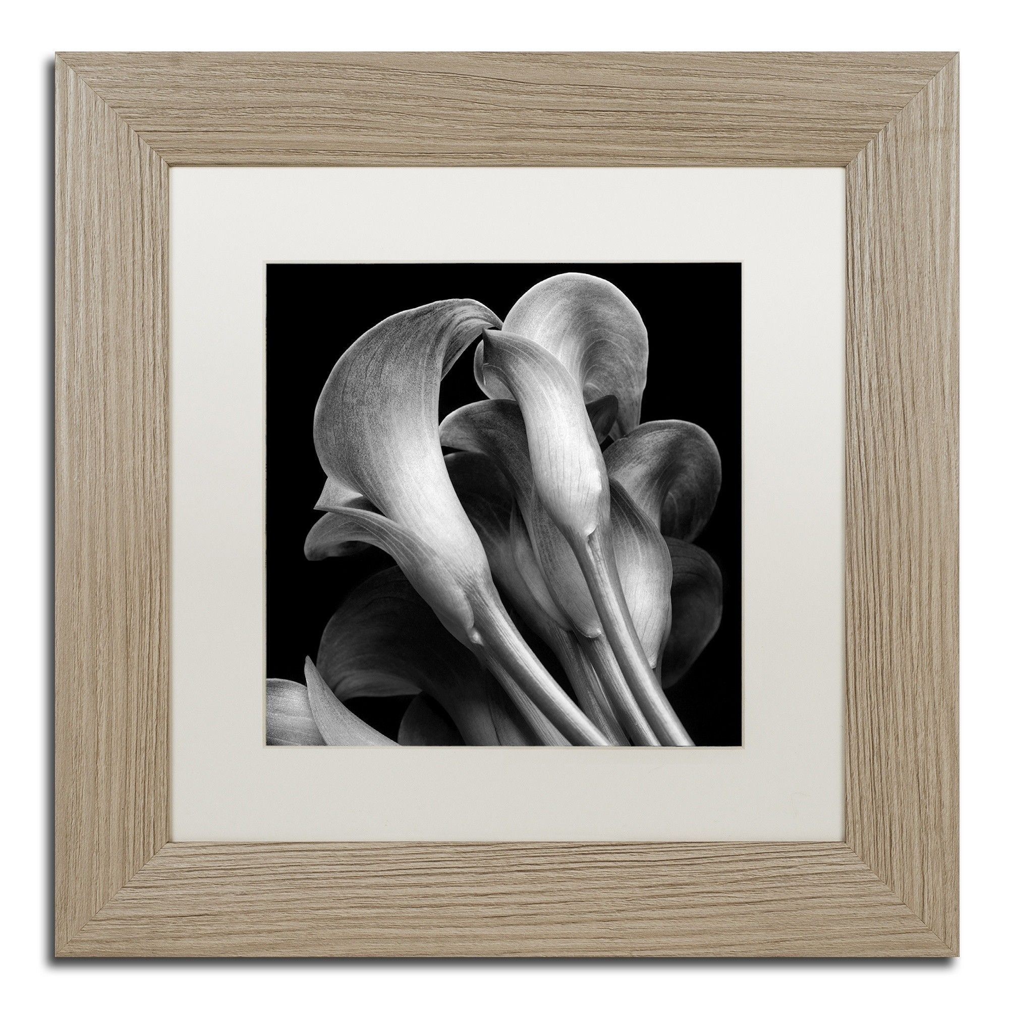 lillies by michael harrison framed painting print