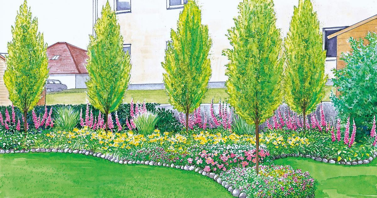 Sichtschutz für einen kurzen, breiten Garten Garten - garten pflanzen sichtschutz