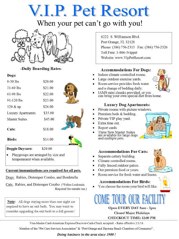 Vip Pet Resort Really Affordble Daily Rates Pet Resort Dog Daycare Business Dog Daycare