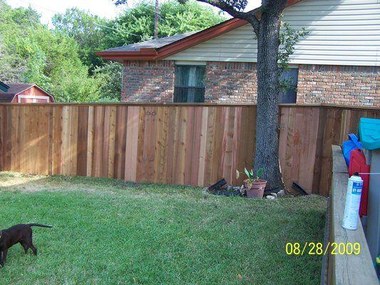 Fence Around Tree Google Search