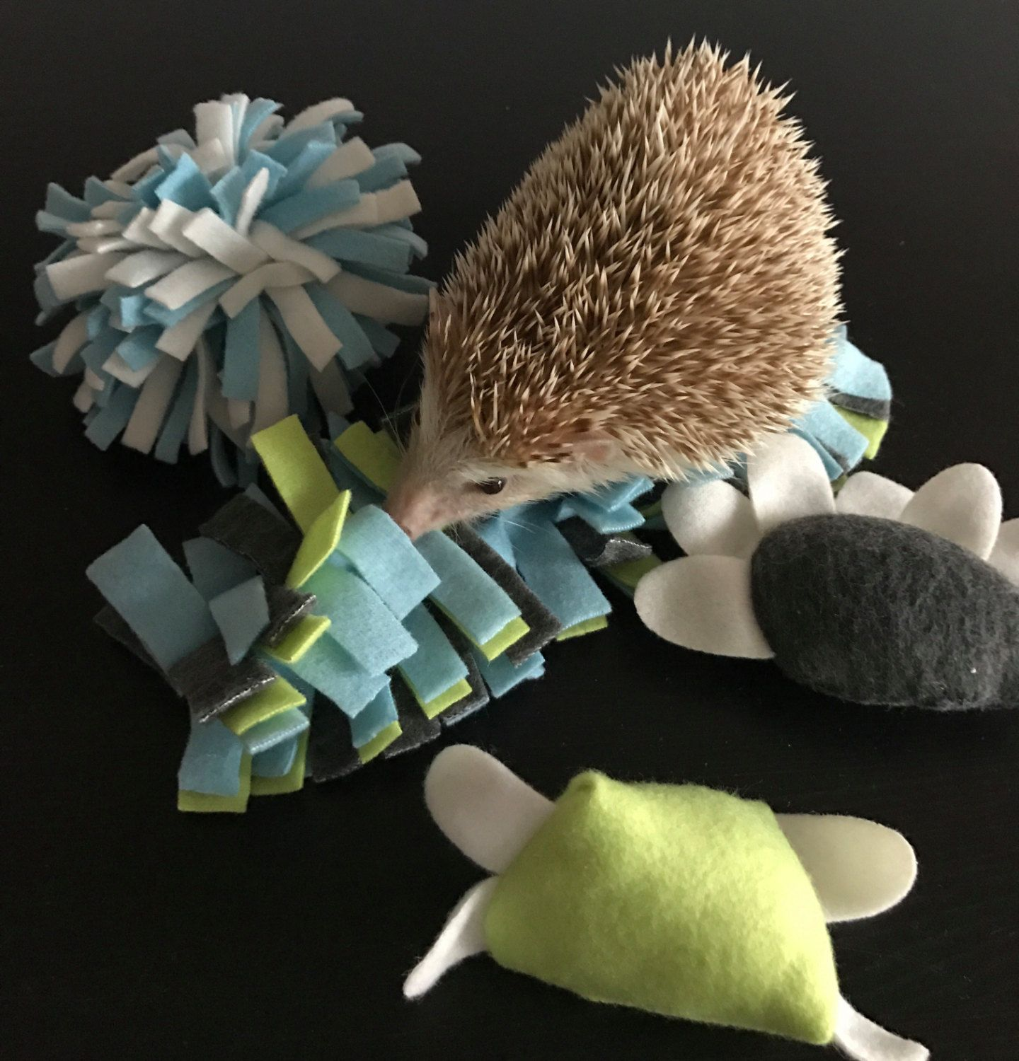 Toy Bundle 1 Toys For Hedgehogs Small Pet Toy Bell Toy Etsy Hedgehog Pet Soft Toy Animals Small Pets [ 1500 x 1440 Pixel ]