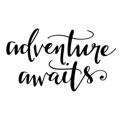 Adventure Awaits Quote Wall Sticker Stickerscape Size: 29cm H x 50cm W, Colour: Black