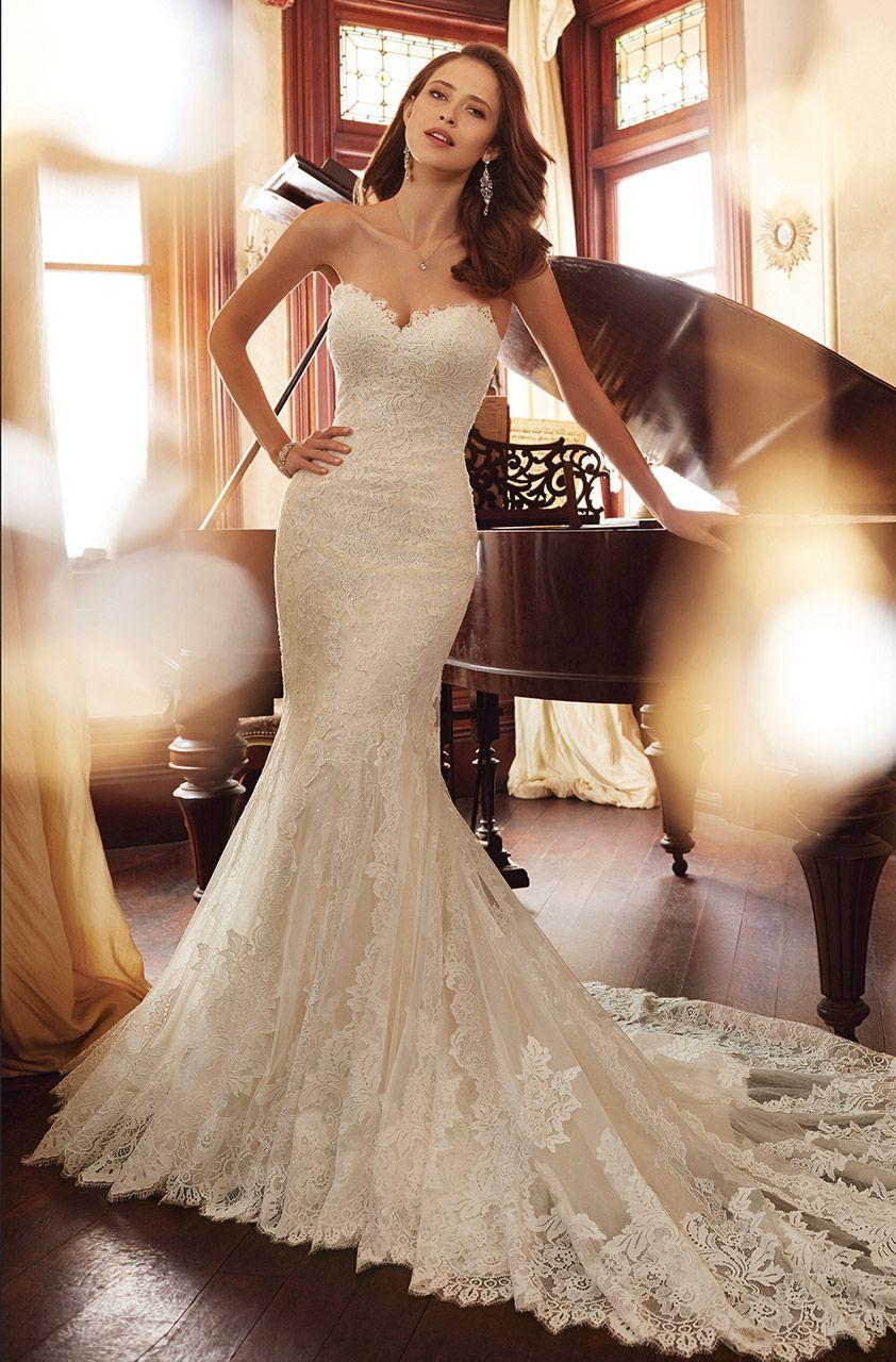 Wedding Gown Gallery Wedding dresses, Wedding dresses