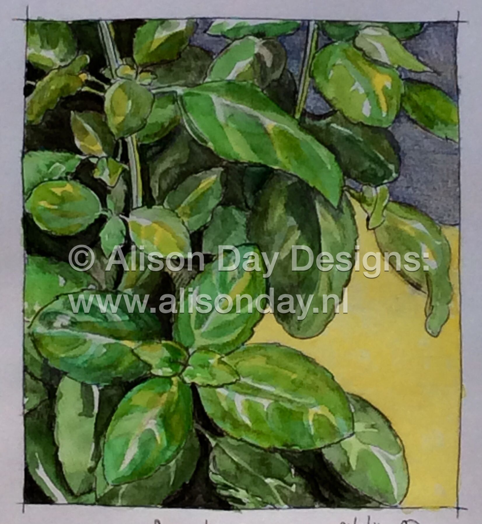 Aromatic Green by Alison Day #PaintingSeptember #Paintseptember