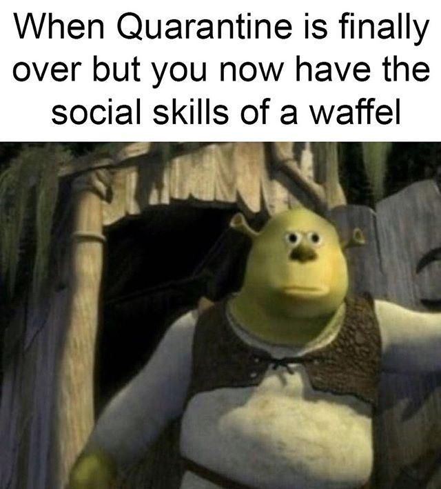 Instagram Funny Relatable Memes Funny Memes Stupid Funny Memes