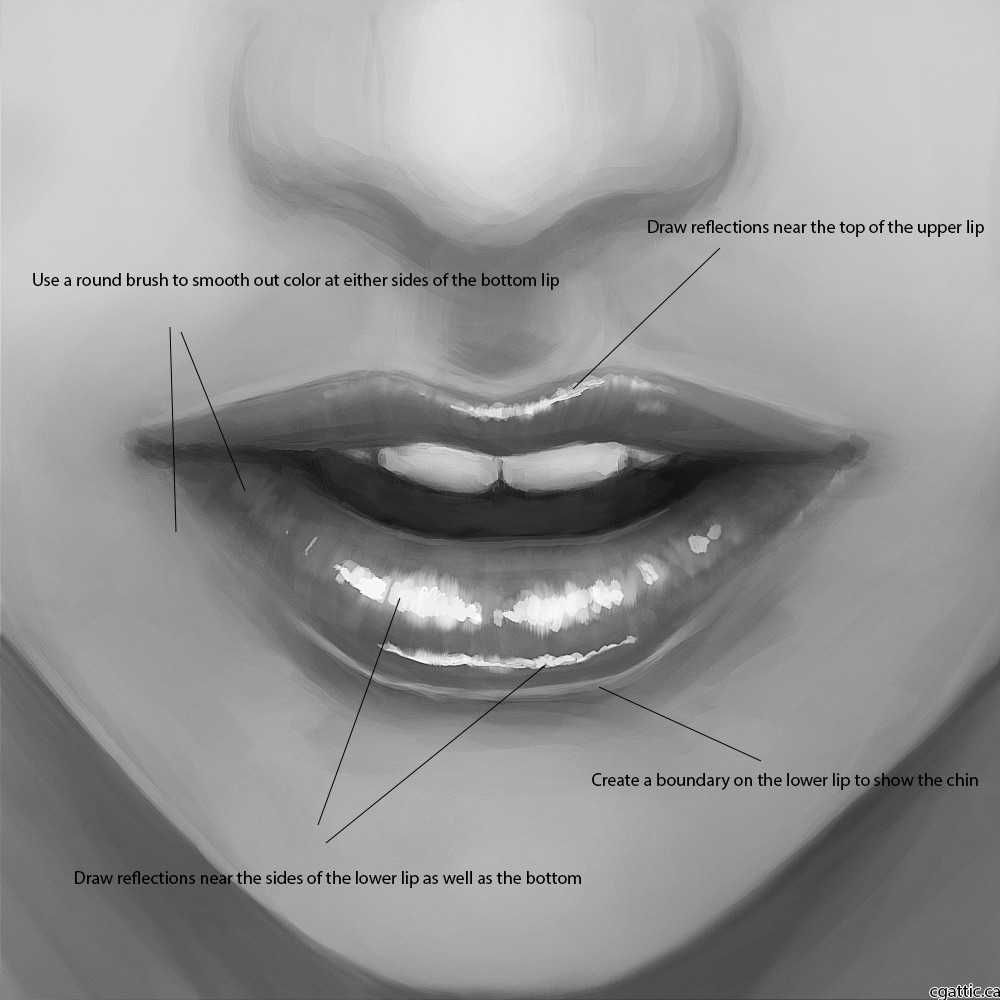 How To Draw Lips In 4 Steps With Photoshop