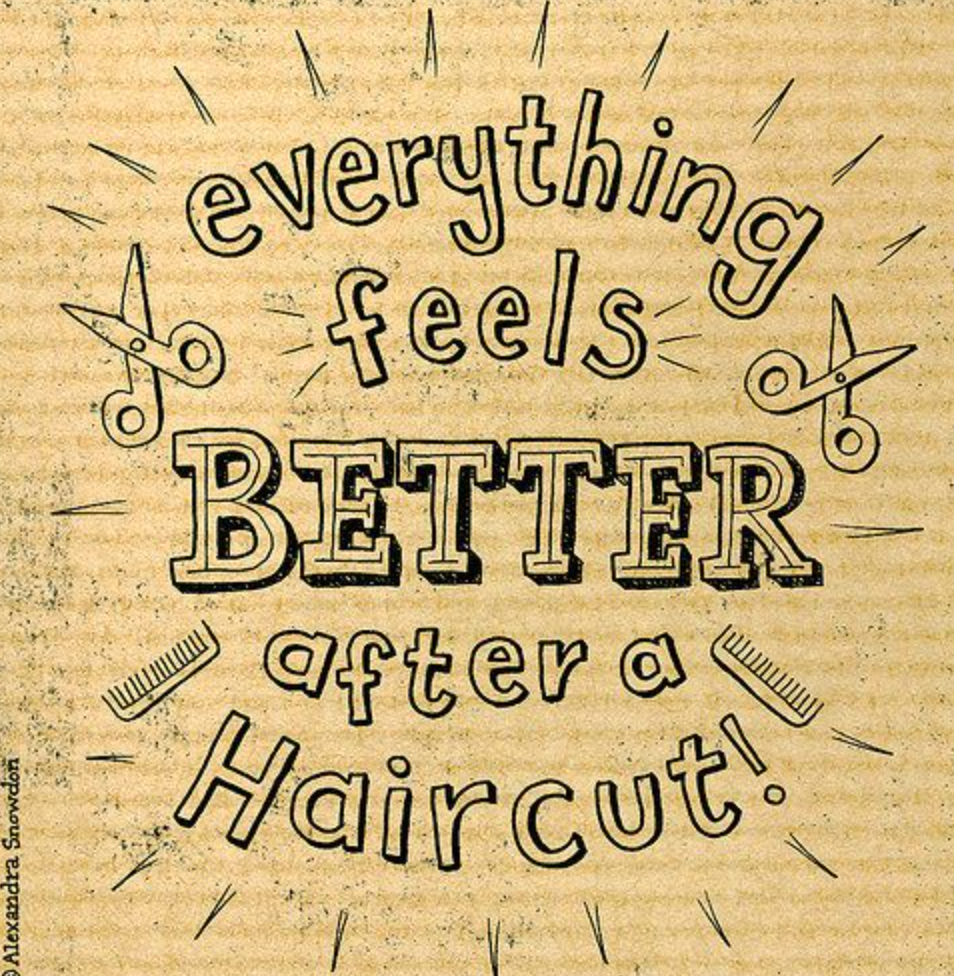Hairstylist Quotes Fascinating Image Result For Curly Hair Quotes  Salon  Pinterest  Hair Quotes