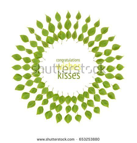A greeting card template with a pattern of green leaves and a - greeting card template