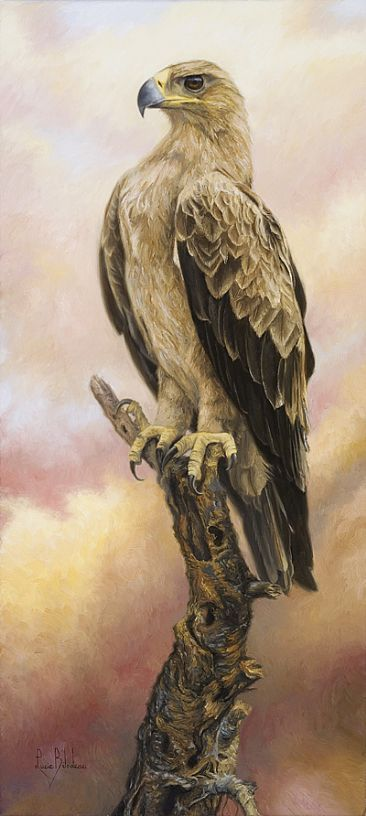 African Bird Of Prey Painting Art By Lucie Bilodeau Eagle Painting Eagle Art Beautiful Birds