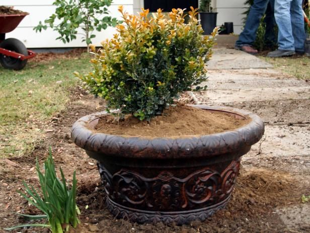 Spruce up a humdrum walkway with new planting beds and sunken planters with the help of the experts at DIYNetwork.com.