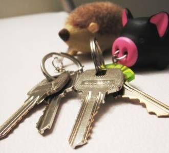Seguridad de la vivienda: llaves escondidas en el jardín | Domokyo