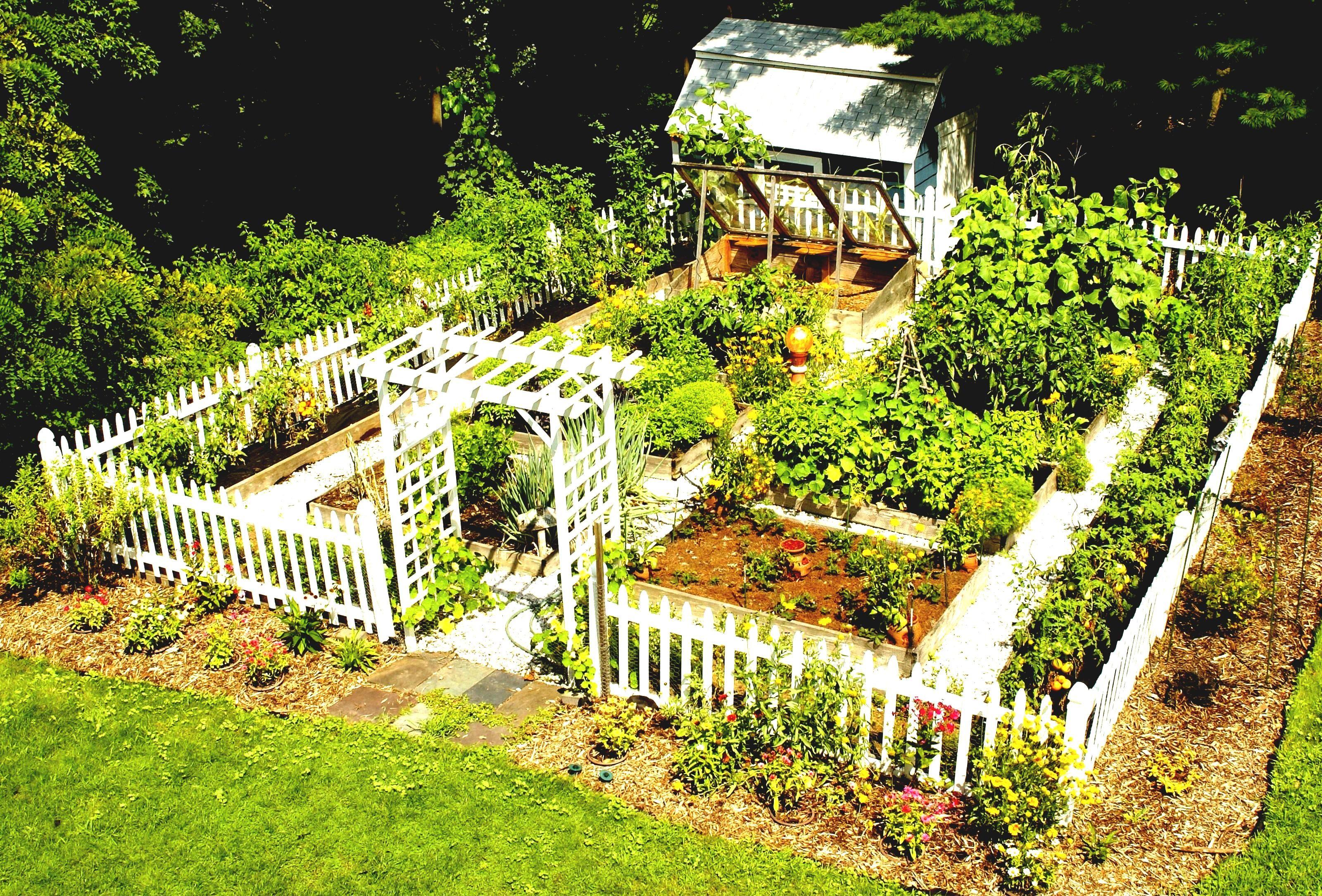 Gemüse Garten Design Layout Neue Auf Modernen Plan Cool