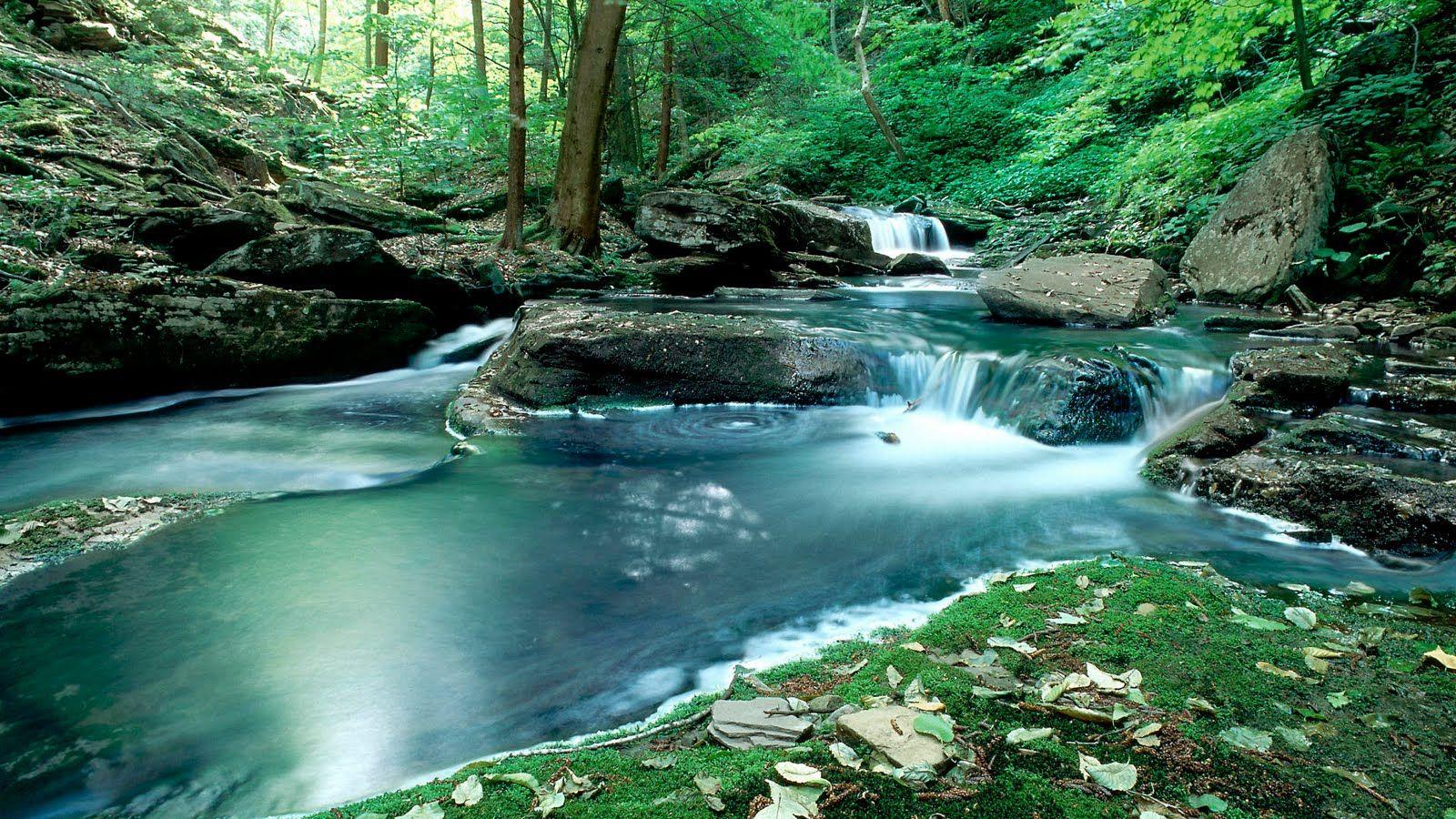 17 Best ideas about Nature Desktop Wallpaper on Pinterest ...