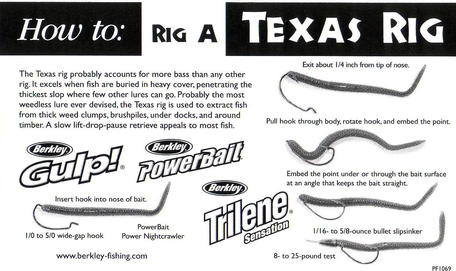 Image gallery texas rig for Texas rig bass fishing