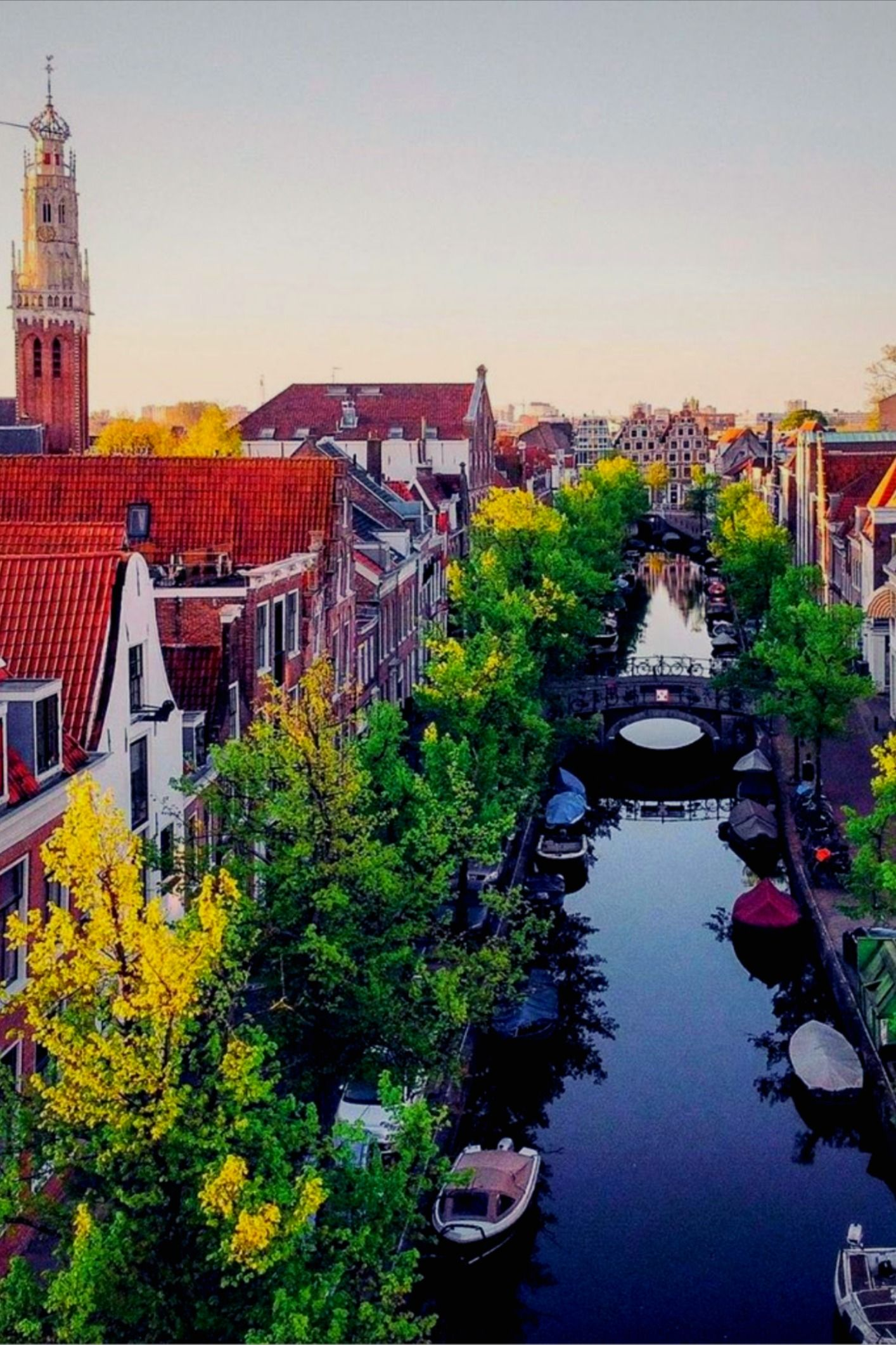 Primavera En Holanda Lugares Increibles Viajes Viajar Por El Mundo