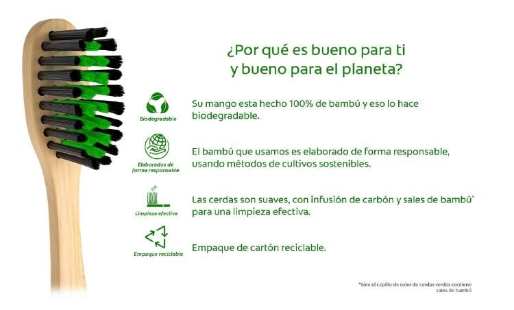 Photo 2020 10 27 16 24 13 En 2021 Cepillos De Dientes Propiedades Del Bambu Cerditos