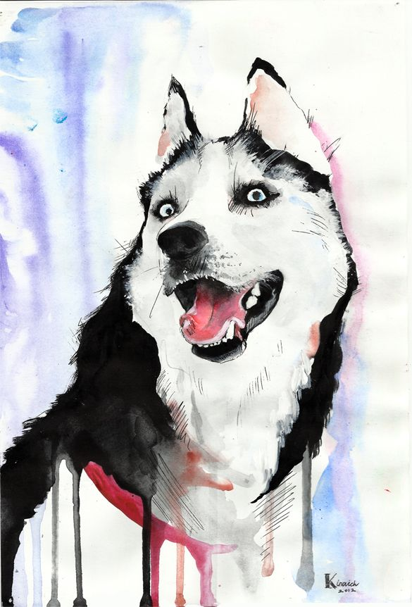 Husky By Ksenia Kinovich Illustration Watercolor Dog Husky