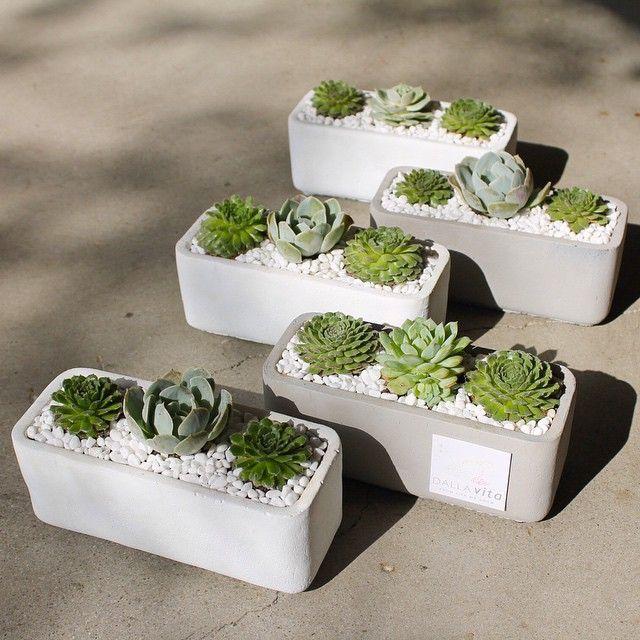 Como Hacer Macetas De Cemento Concreto U Hormigon Jardin