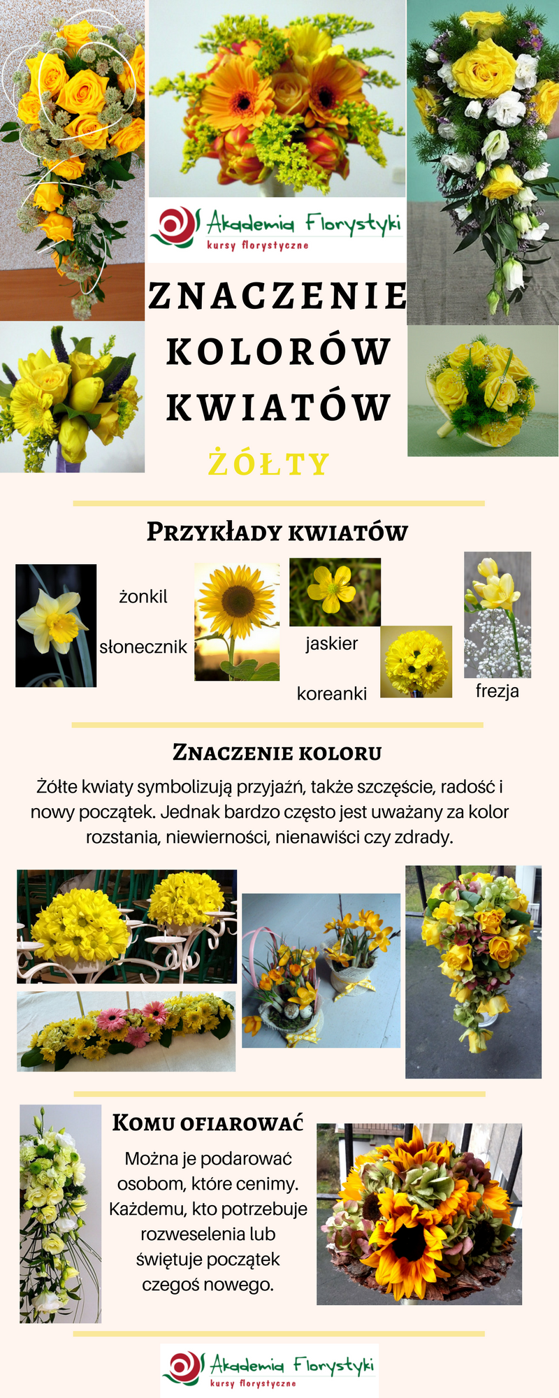 Znaczenie Kolorow Kwiatow Zolty Symbolika Slonecznik Flowers