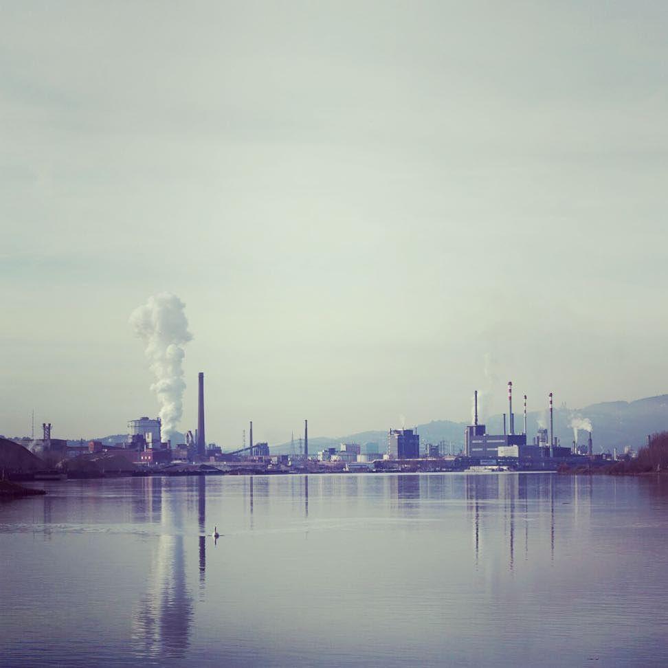 #skyline #linz #austria #voestalpine #voest #linzpictures #danube #industrieland #upperaustria #oberösterreich #wirtschaft #wildlife #citylife #nature #working #traunau #donau #riverdanube