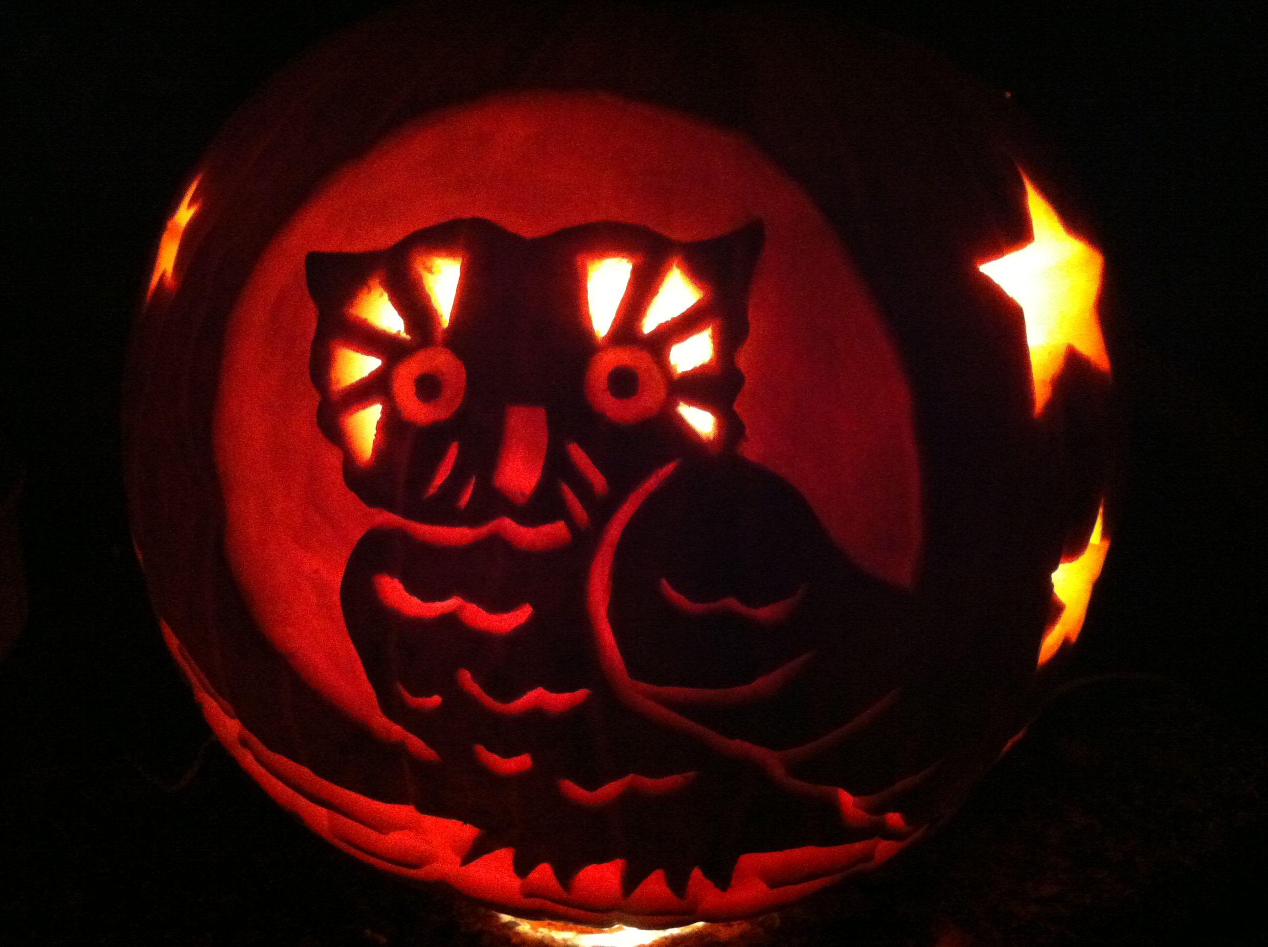 Night Owl Carved Pumpkin Crafts Pinterest
