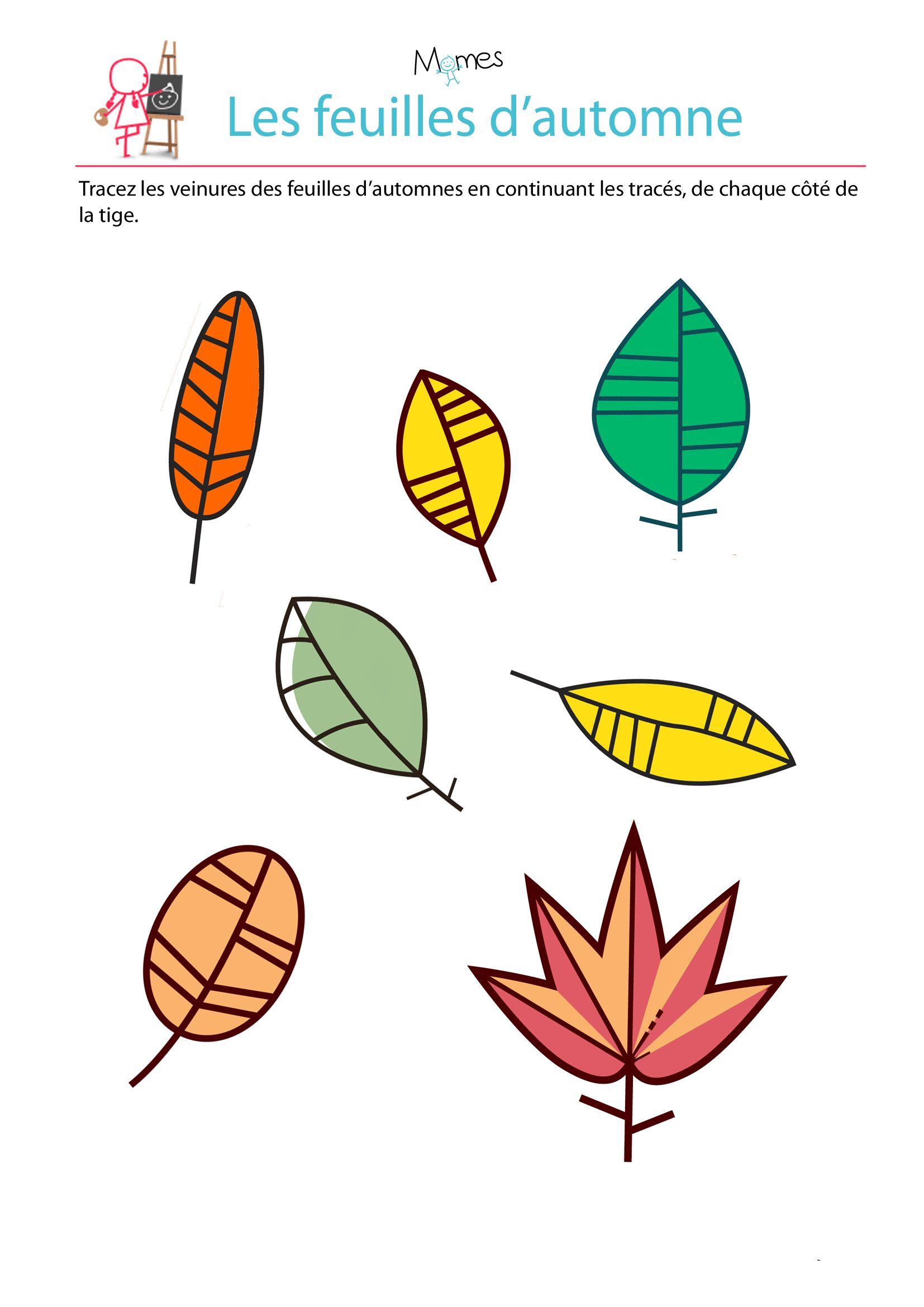 Reproduction sym trique les feuilles d 39 automne l 39 automne pinterest feuille automne - Symetrie a imprimer ...