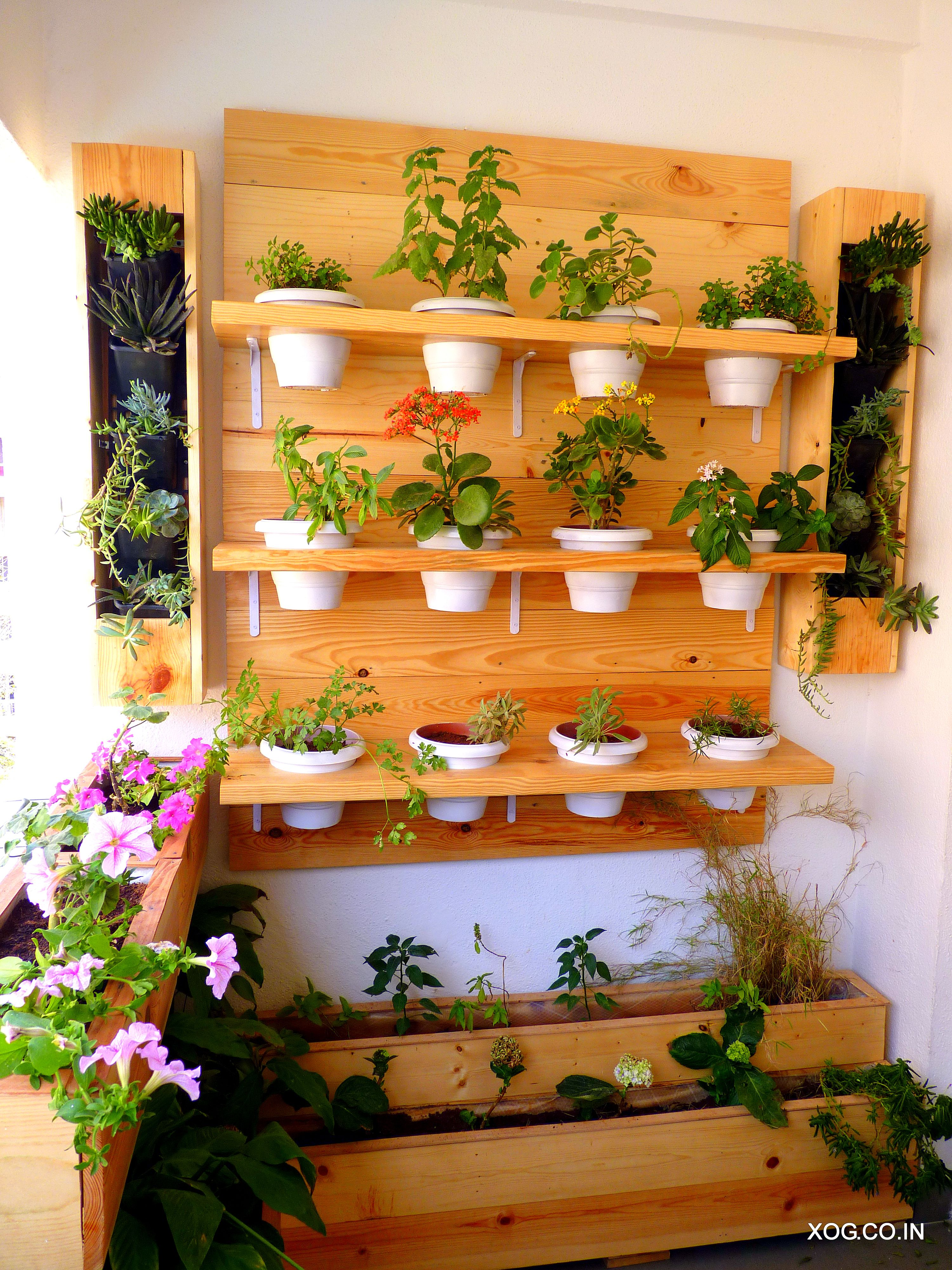Plant Rack A Delightful Way Of Housing Potted Plants Onto