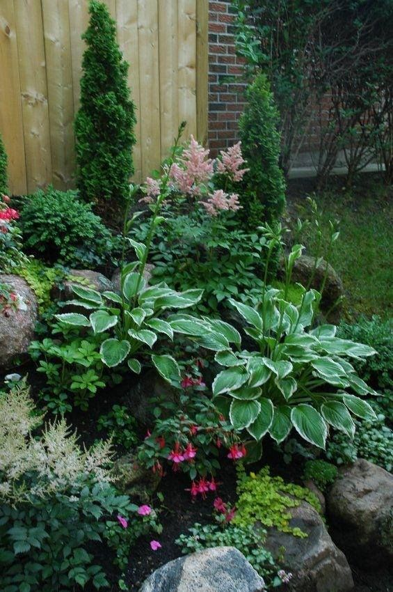[What a lovely shade garden. I see hostas, astilbes, fuchsias, impatiens, lamiums, miniature evergreens, and, I think, golden creeping jenny.]