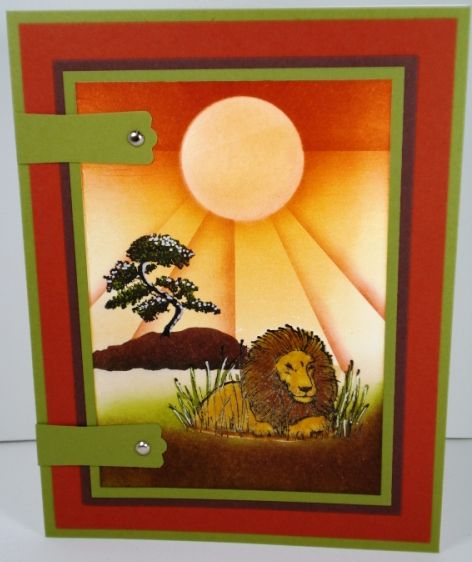 Zindorff Class 9 Cards With Big Cats Pinterest Zoos Cards And
