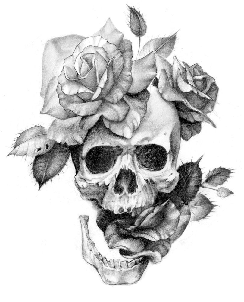 Black And White Skull And Roses Framed Art Print By Sarachnid Vector Black Medium Gallery 20x26 Skull Rose Tattoos Skull Tattoo Design Skull Art