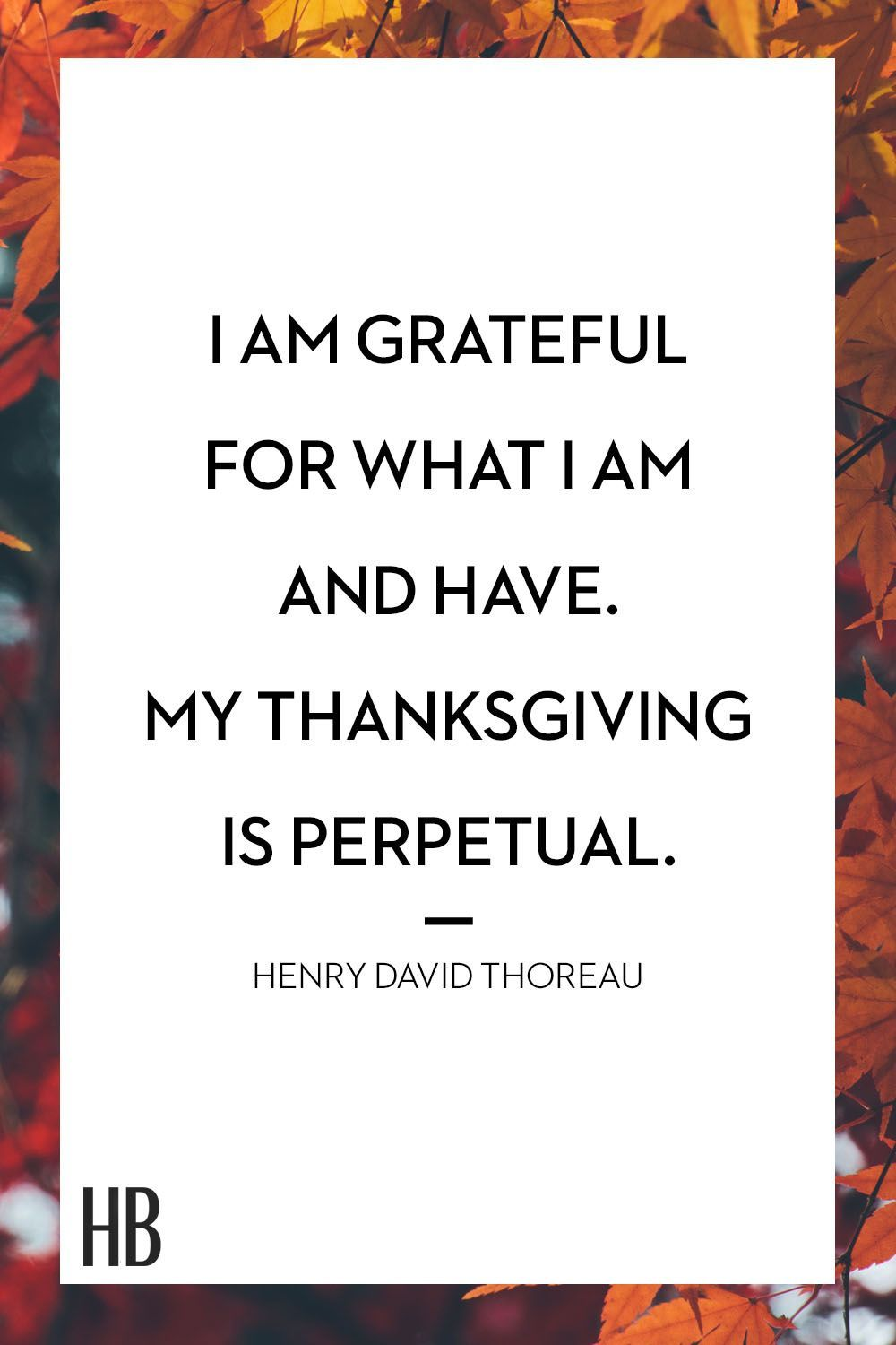 18 Thanksgiving Quotes That Remind Us Whats Truly Important