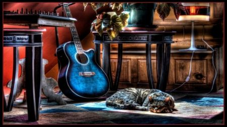 cat sleeping next to a blue guitar hdr
