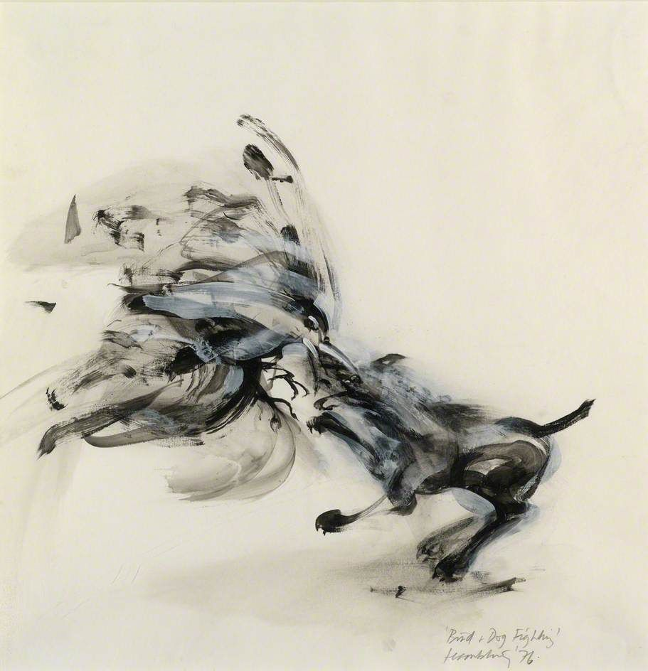 bird and dog fighting by maggi hambling art drawings bird and dog fighting by maggi hambling 1976