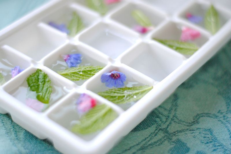 Mint-and-borage-flowers-in-ice-cube-tray