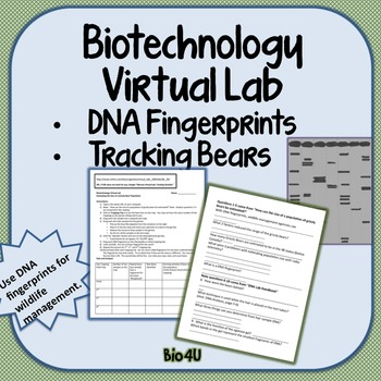 Biotechnology Internet Virtual Lab | Dna fingerprinting ...