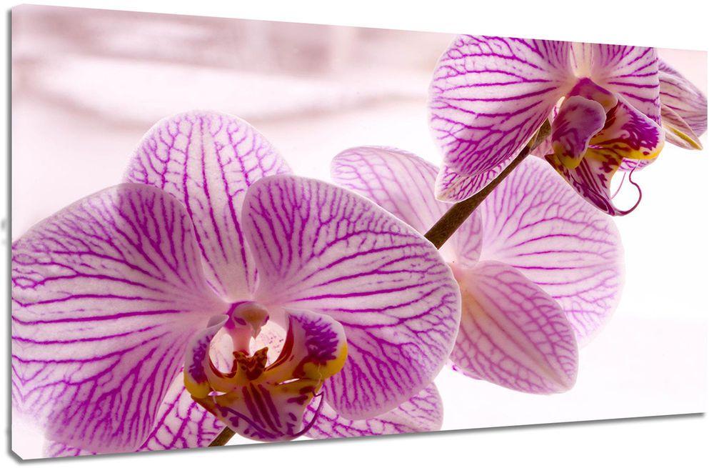 Quadro moderno fiori orchidee natura arredo casa arte stampa su tela