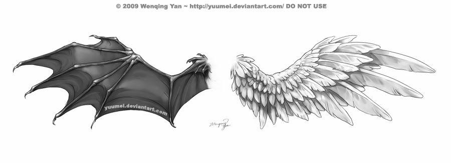 como desenhar asas de anjos morcegos pássaros etc é tudo igual