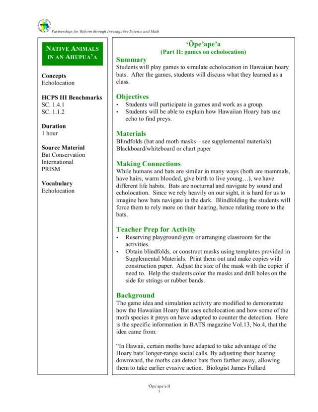 Games on echolocation lesson plan lesson planet - Game design lesson plans for teachers ...