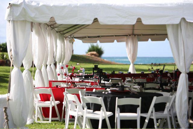 Royal Party Rental tent pole drape covers
