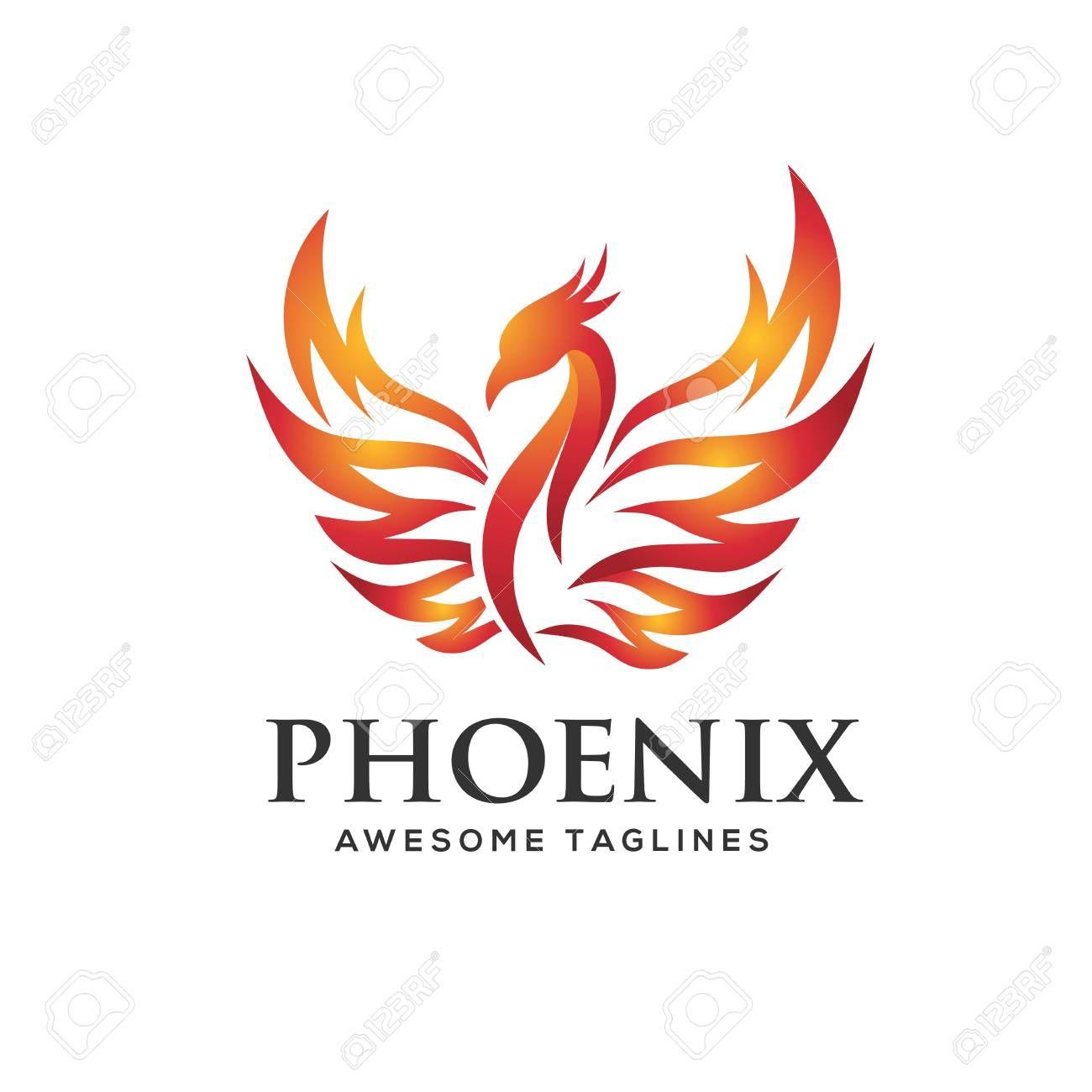 Luxury Phoenix Logo Concept Best Phoenix Bird Logo Design Phoenix Vector Logo Creative Logo Of Mythological Bird Bird Logo Design Bird Logos Logo Concept