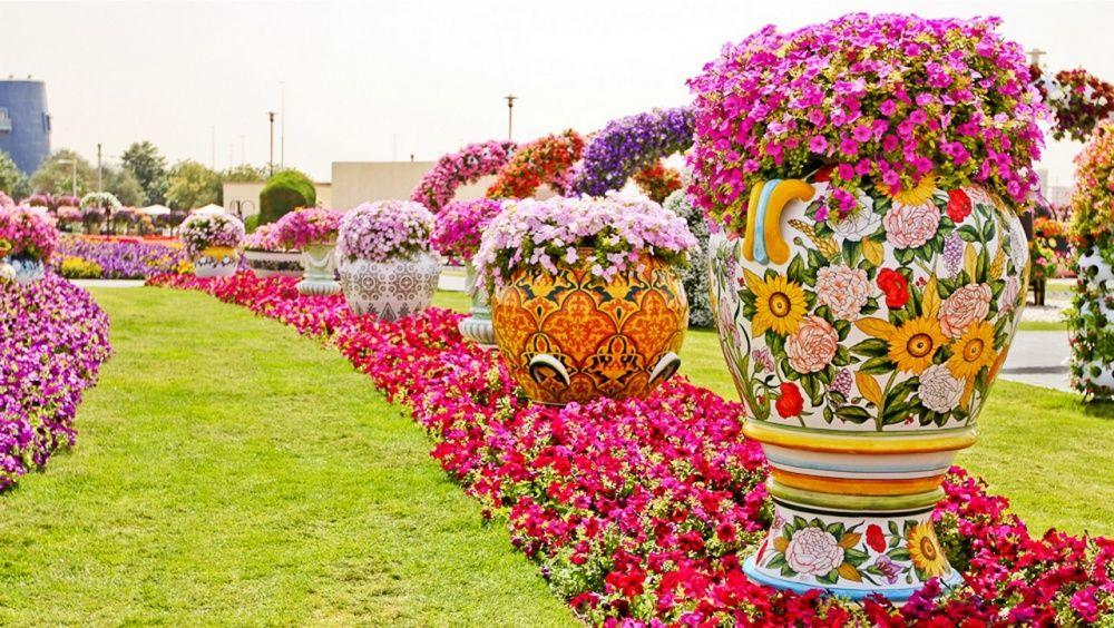 Eto Zhe 8 E Chudo Sveta Unikalnyj Sad V Dubae Udivit Dazhe Samyh Pridirchivyh Hermosas Flores Fotos De Flores Hermosas Jardin De Flores
