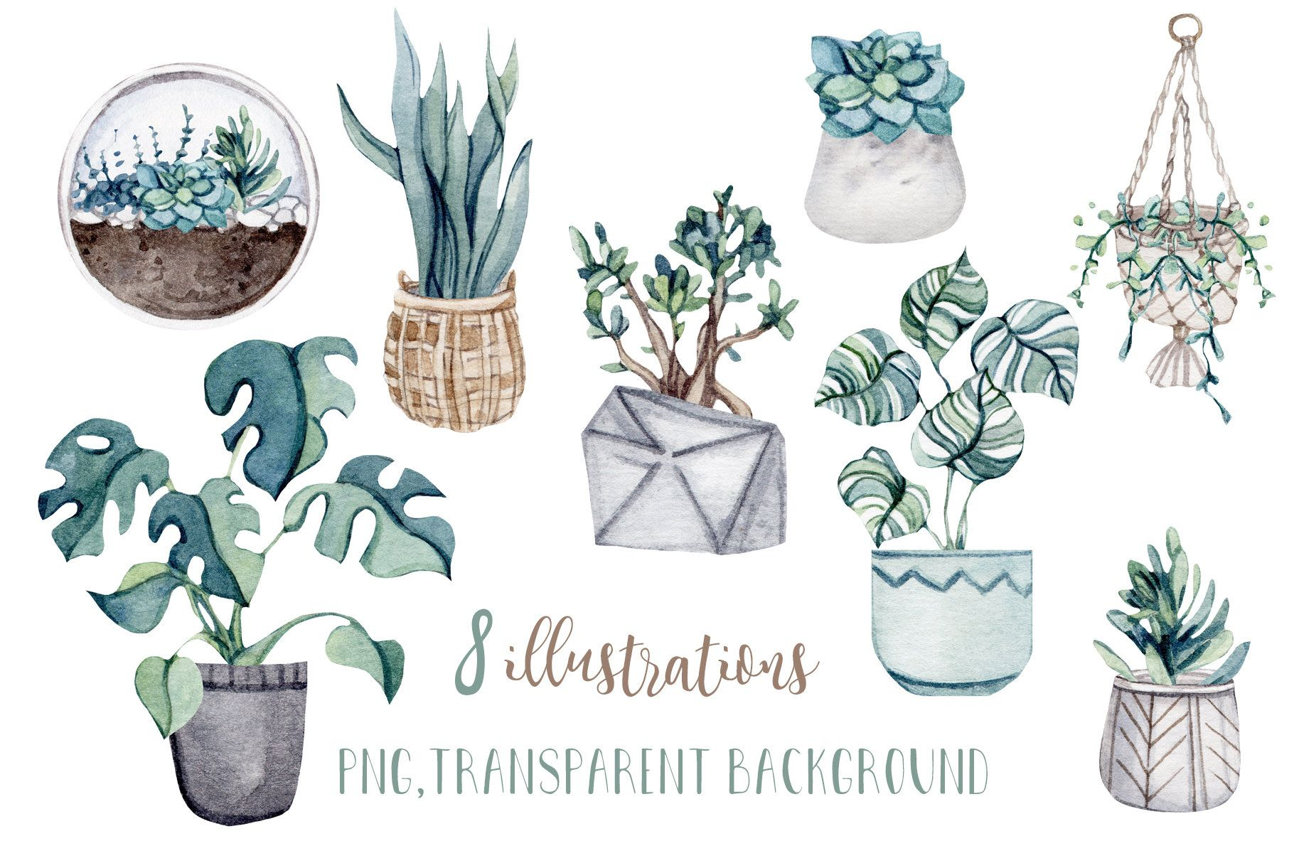 Watercolor Home Plants Png Clip Art Illustration Watercolor Clipart Plant Illustration Illustration Art