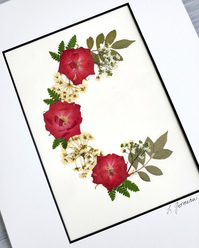 Pressed Flowers Natural Dried Real Blossom DIY Craft Gift Red Rose