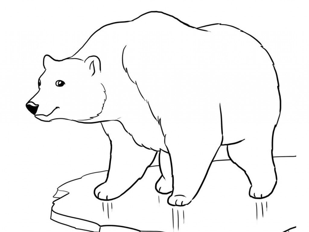 Printable Polar Bear Coloring Pages