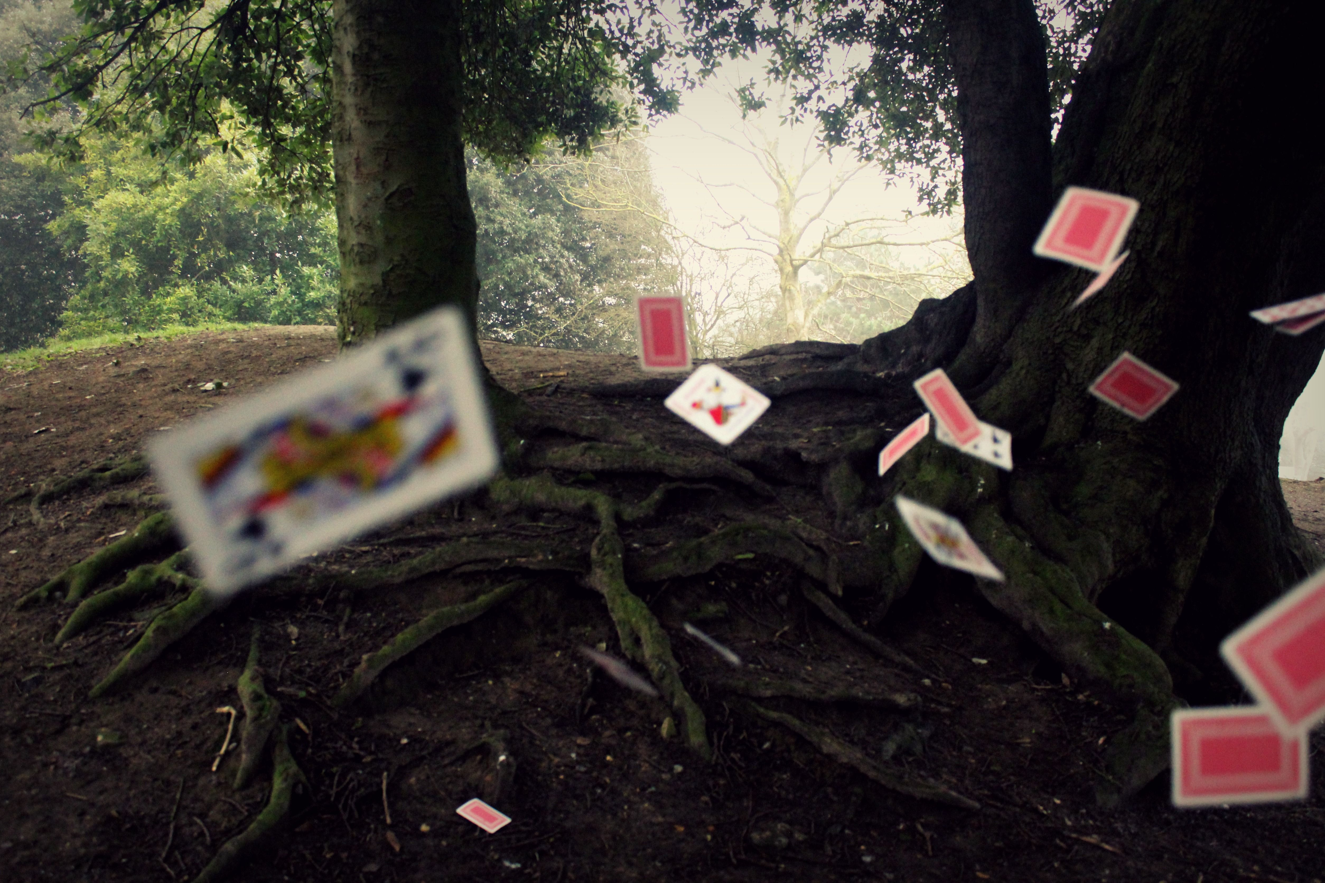 Playing Cards / Photography Coursework