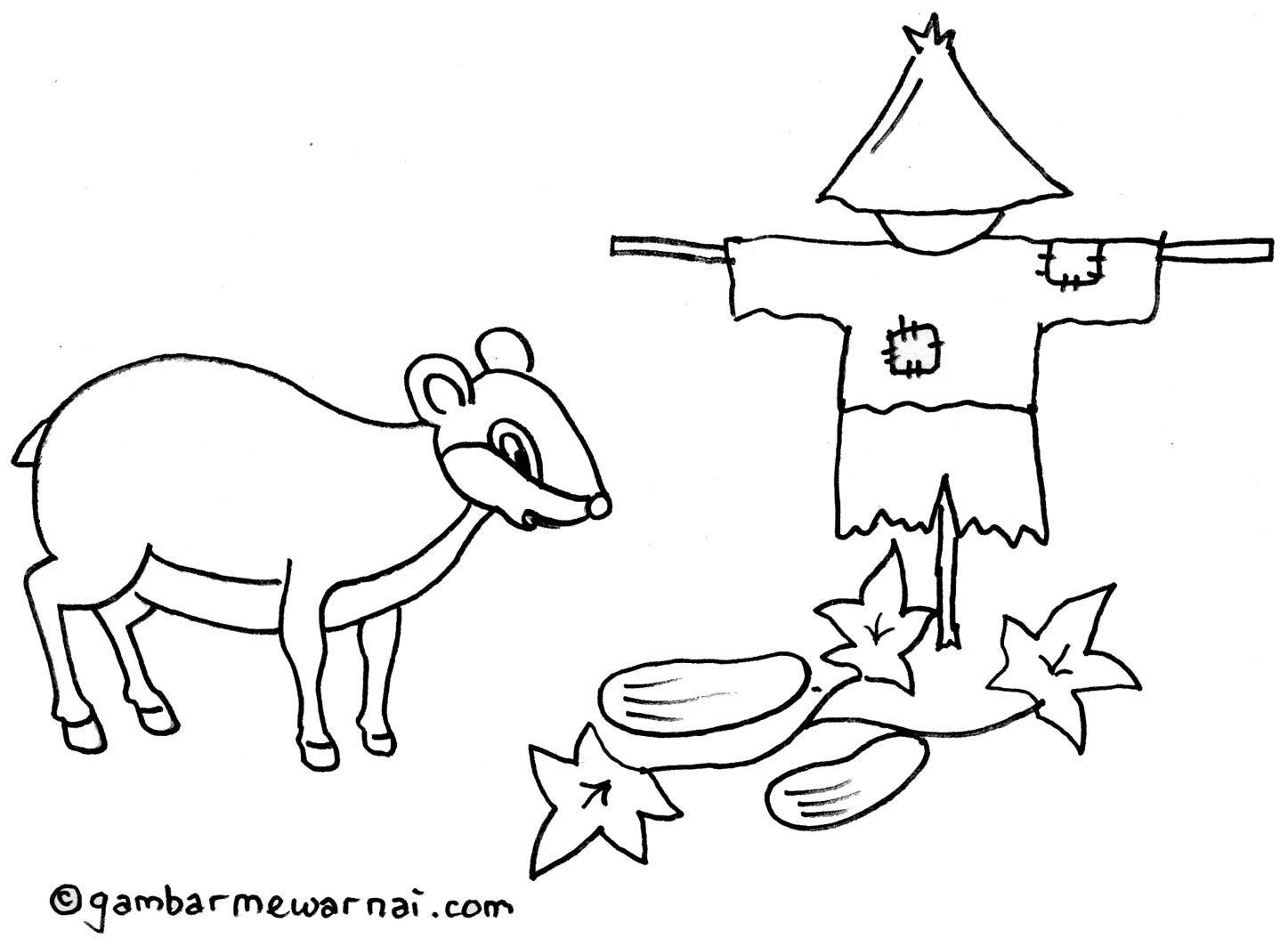 Gambar Mewarnai Kancil Mencuri Ketimun Dokument Animals Pets
